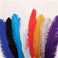 Feather Plumes