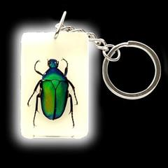 Insect Art Green Beetle Keychain