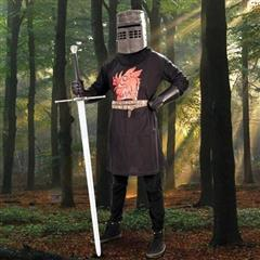 The Black Knight Costume