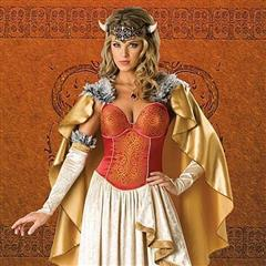 Viking Princess Complete Costume